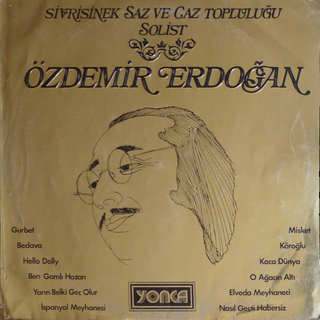 Medium ozdemir erdogan sivrisinekjaz